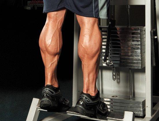 Các bài tập bắp chân