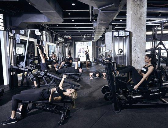 Gym là gì?