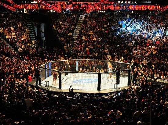 Sàn đấu MMA