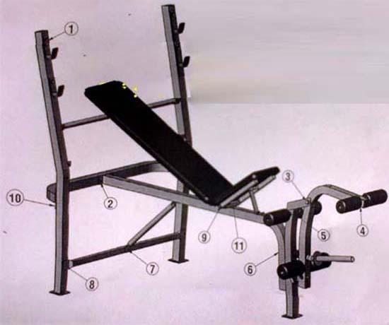 Thiết kế ghế tập tạ Ben 601401