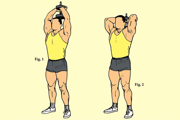 Standing Dumbbell Tricep Extension