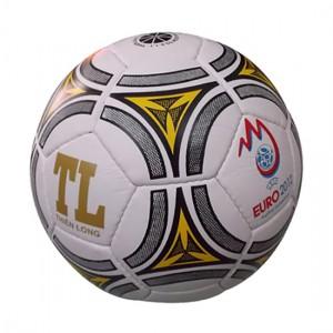 Quả bóng đá Thiên Long