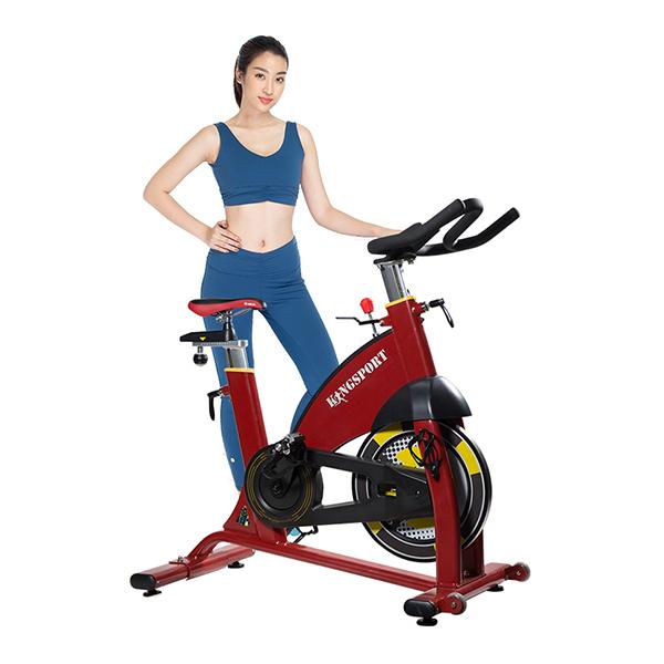 Xe đạp tập Kingsport BK-5809